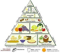 256px-Loma_Linda_University_Vegetarian_Food_Pyramid
